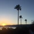 リゾ鳴尾浜からの夕日はめっちゃきれい